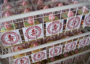 longevity peach cupcake individual box